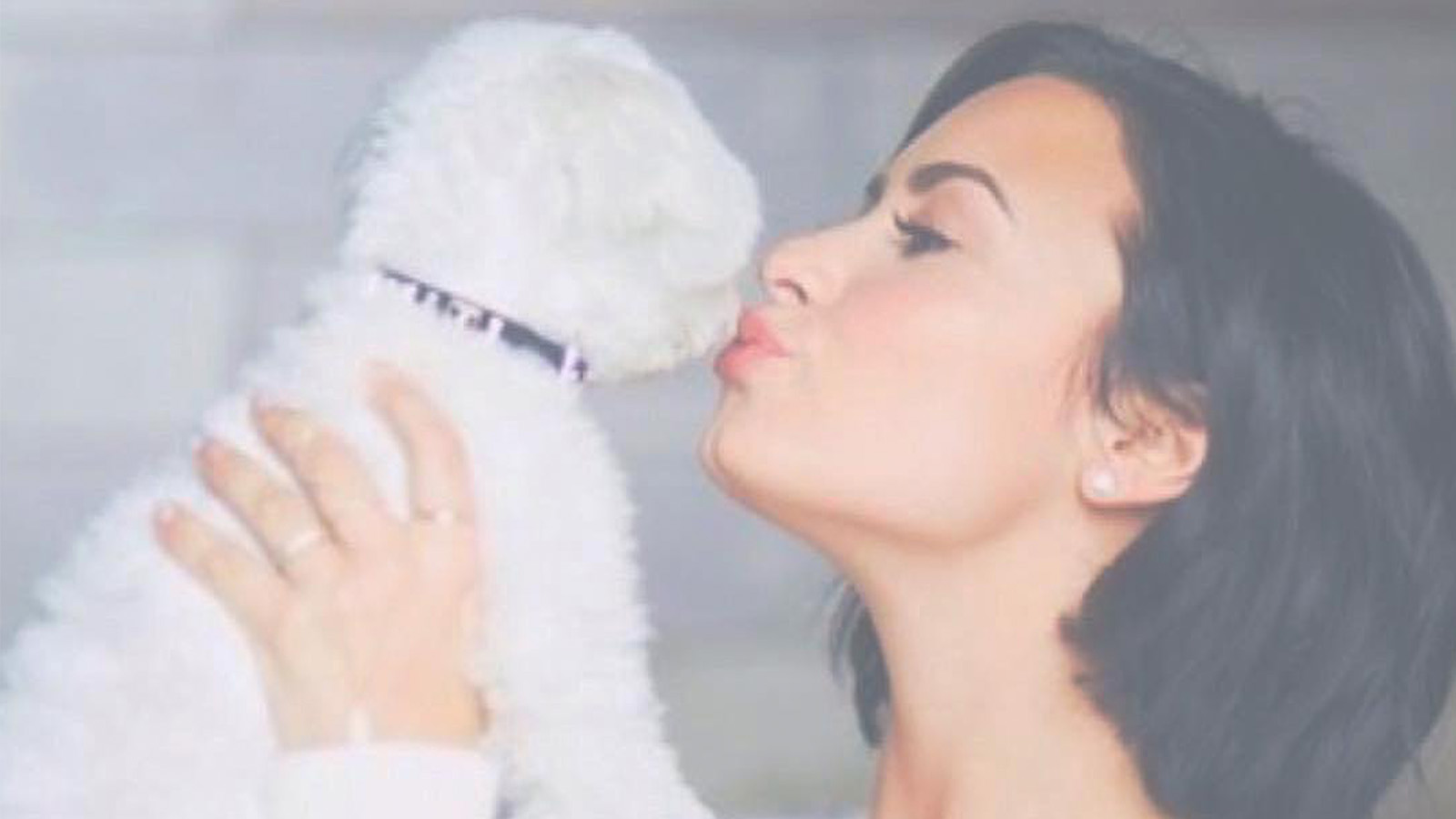 Demi Lovato Shows Off New Tattoo Of Her Late Dog Buddy Access