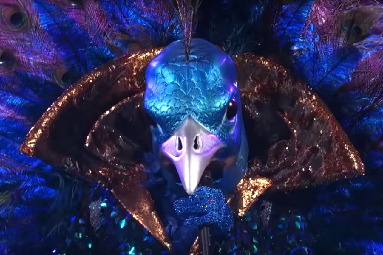 "The Peacock from ""The Masked Singer"""