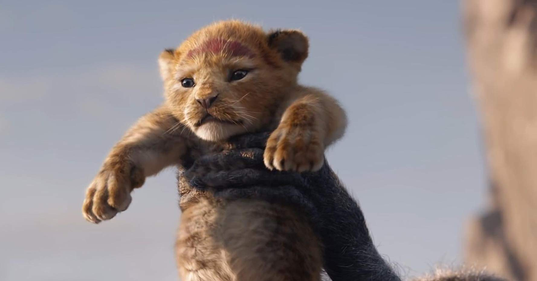 The Lion King Official Trailer Is Here The Animals Are