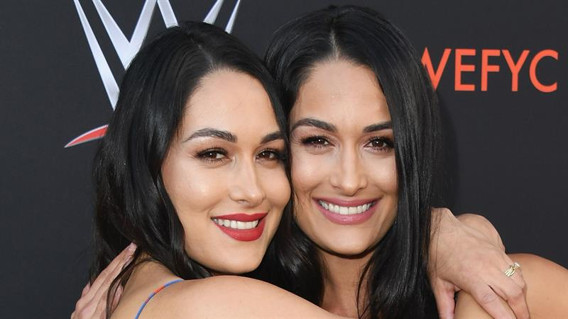 The Bella Twins Reveal They Are Both Pregnant