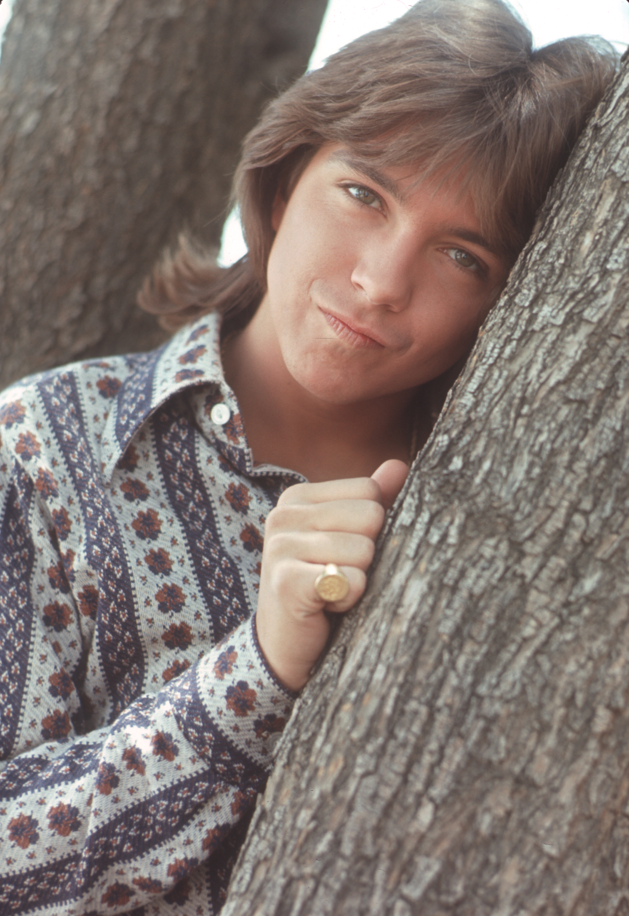 Former-Partridge-Family-Star-David-Cassidy-Reveals-Battle-With-Dementia