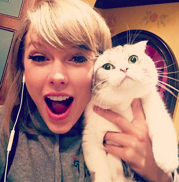13-Times-Taylor-Swift-Proved-Shes-The-Purrfect-Cat-Lady