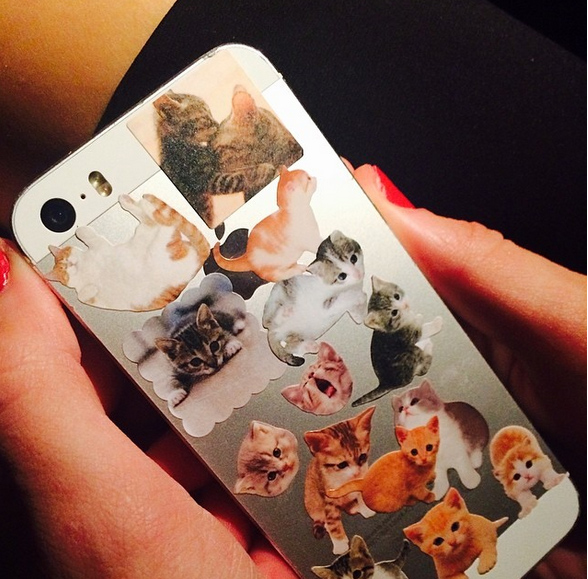 Taylor Swift Cat Stickers